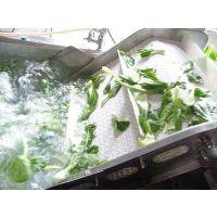 牛皮菜鼓泡式清洗机/中小型芦笋气泡清洗机