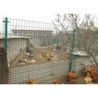 厂家现货批发养殖围栏浸塑铁丝荷兰网圈地围栏铁丝网包胶铁丝网