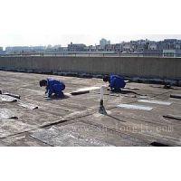 苏州平江区防水补漏、别墅、屋顶、厂房外墙阳台窗户漏水维修
