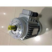 上海德东电机供应 (YS100L-2 3KW)大量产品销售中2极YS铝壳电机