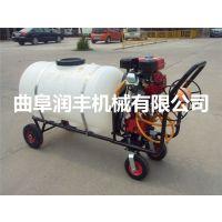 农用汽油手推式喷雾机 农用汽油式喷雾机图片素材