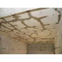 楼板网状裂缝处理,工程师A9网状裂缝封闭剂,裂缝处理