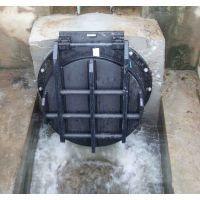 河北弘洋水利机械厂供应法兰式污水处理直径600mm球墨铸铁拍门