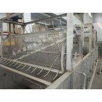 潍坊品牌好的豆芽清洗设备出售|供应豆芽清洗设备
