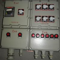 防爆配电箱厂家 防爆配电箱|BXM(D)防爆照明(动力)配电箱 加一防爆