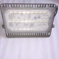 飞利浦Mini LED室外投光灯BVP161/100W