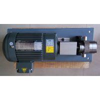 耐高温中空纤维超滤膜计量泵MBR平板膜齿轮泵规格纺丝泵厂家