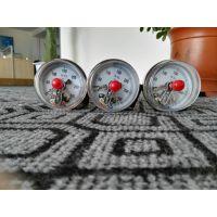 WSSX-402电接点双金属温度计,泰州双华仪表厂家销售