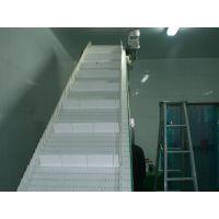 爬坡提升模组网链流水线 传送线,传进牌300系列网带线
