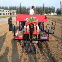 移栽机|2ZBX-2型甜菜专用移栽机|用户口碑好的移栽机厂家适应性广效率高|田耐尔
