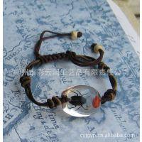 长期供应红豆昆虫标本琥珀 透明款 工艺编织手链 昆虫琥珀饰品