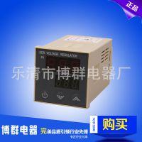 供应吹瓶机专用电压测量温控仪 可控硅智能电压控制仪SCR-100