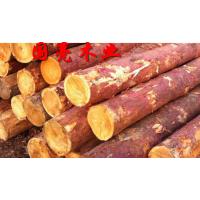 松木桩古建房屋檩条樟子松花旗松落叶松批发质优价低