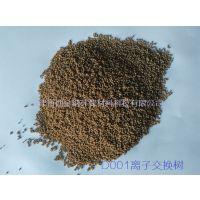 d001大孔树脂/氨基酸提炼树脂/生物提取大孔树脂