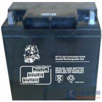 美国金狮蓄电池卖价多少钱