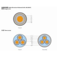 供应齐鲁牌铜芯聚乙烯绝缘聚乙烯护套交联电缆YJV32 2*240+1*120