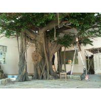 仿真水泥榕树制作施工 广州假树现场施工团队 水泥玻璃钢仿真树 餐厅榕树定做