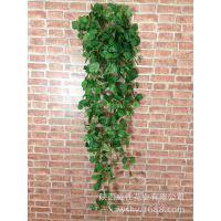 加工定制 绢布仿真蕃茨盆栽 绿叶壁挂仿真盆景