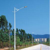 LED路灯 定制6米8米市政工程道路照明20W 60W 80W 120W路灯批发