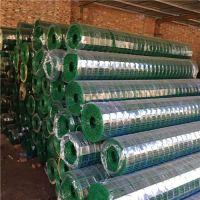 绿色养殖网厂家供应圈地围栏网 鸡鸭防护铁丝网