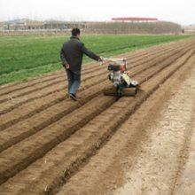 宏兴农用蔬菜种植开沟机 开沟培土机 起垄机