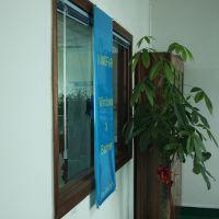 批发优质吸盘式X型橱窗展示架 促销海报展示塑料支架 金翼厂家