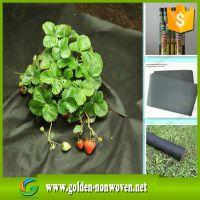 3%UV nonwoven rolls agriculture non woven fabric