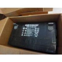 西恩迪大力神蓄电池2V-1200AH LBT免维护蓄电池 全国免运费