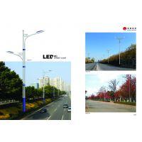3.5米太阳能庭院灯 太阳能一体化庭院灯 庭院灯 40W路灯