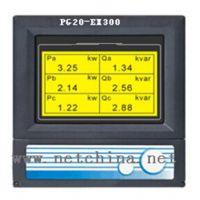 电量记录仪/无纸记录仪PG20-EX300/中国 型号:M257033