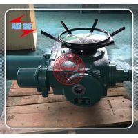 阀门电动装置DZW10-24-A00-DS1-ZTD10