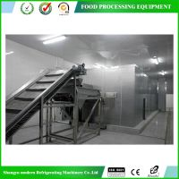 【厂家直销】流态化速冻机,专用速冻设备,速冻食品机械设备公司