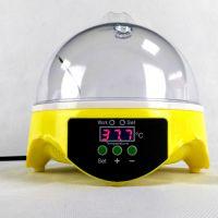 HHD家用型7枚迷你孵化机 自动控温 科教实验孵化器 厂家直销