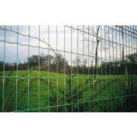四川成都专业生产牧场围栏网 荷兰网防护网 农业养殖铁丝网价格