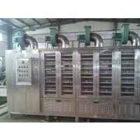 供应宜福达YGZ-8800型芥菜缨连续烘干干燥机|卧式连续辐射式真空干燥机