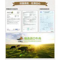 深圳中鼎兴进口冷冻生鲜肉类产品全套清关服务商检报关