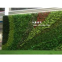 江南园艺订制仿真植物墙 仿真植物草球 仿真树