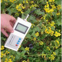 TWS-3MST土壤温湿度自动记录仪,土壤温湿一体速测仪