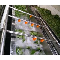 汇康牌全自动洗菜机,连续式洗菜机,蔬菜加工设备
