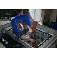 空运活鱼运输系统、恒温活渔运输系统、高密度活鱼运输箱、保温箱、保温桶、水产活鱼运输箱、陆运活鱼运输箱