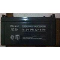 滨松ups蓄电池12V38AH蓄电池包邮含税报价