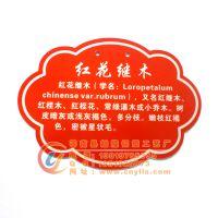树木挂牌:红花继木的学名、别名及特性设计制作
