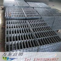 涂塑浸塑电焊网 自动焊接网 工地建筑网片万泰