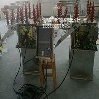 HZW8-12户外10KV柱上智能高压双电源全自动切换开关