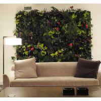 沈阳植物墙,植物墙花盆,植物生态墙,专业施工