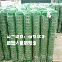 厂家供应5x5孔200丝绿色浸塑荷兰网 铁丝网 果园浸塑荷兰网