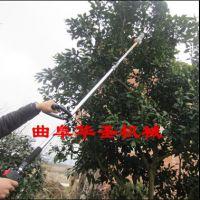 2.8M长直杆手动高枝锯 壁厚耐用汽油高枝修剪油锯 园林工具
