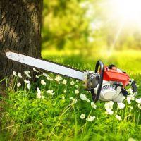 苗木起苗机 润丰 汽油链条挖树机价格 切割土地用