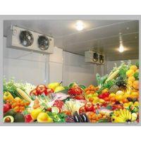 供应安徽黄山蔬菜保鲜库安装公司