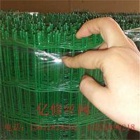 专业生产荷兰网 浸塑电焊网 荷兰网围网 实体厂家